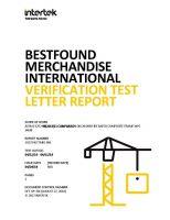 BMI 20 Min Test Report.pdf